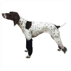 Leg Wraps - Gambale per cani