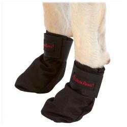 Snow & Go Boot