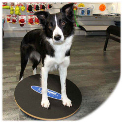 FitPAWS® Wobble Board (50 cm)