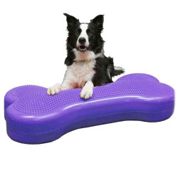 FitPAWS® Giant K9FITbone