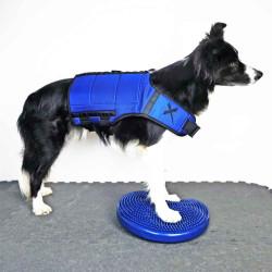 X-Dog Fitness Vest