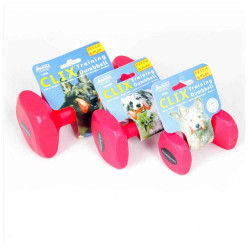 Plastic Dumbbell Large