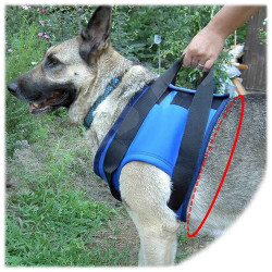 Rehabilitation Harness - MEDIUM