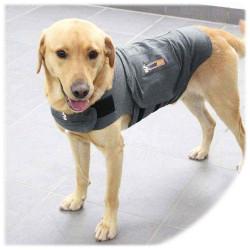Thundershirt contro l'ansia dei cani