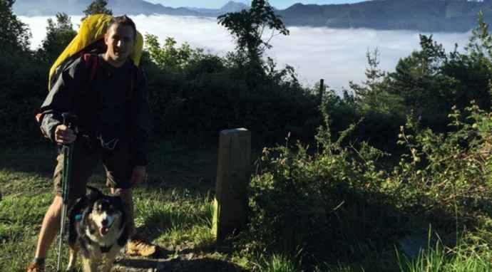 Il Cammino di Santiago con il cane: consigli utili