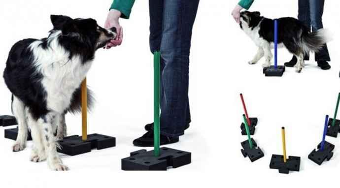DogStepper per il training del cane: modulare, leggero e portatile