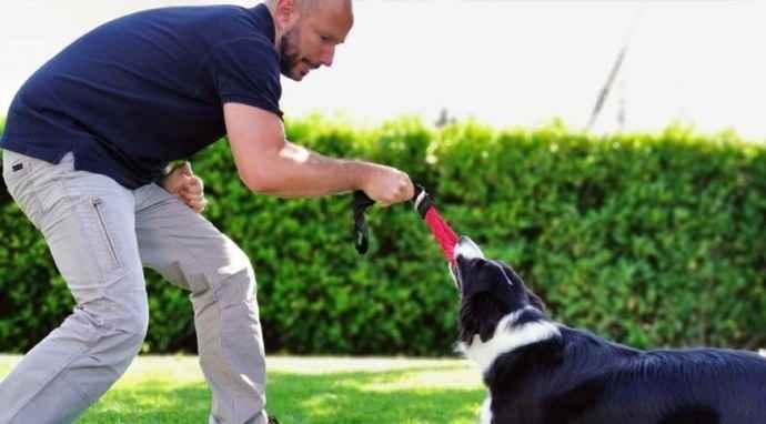 Giochi indistruttibili per cani